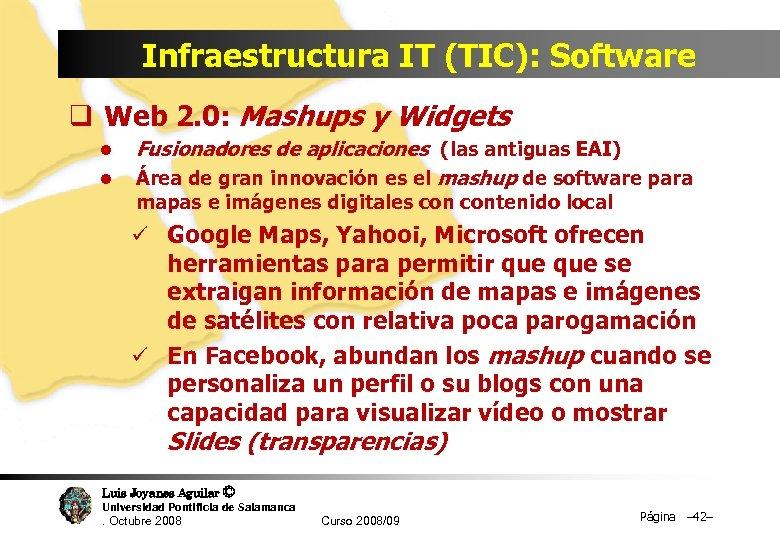 Infraestructura IT (TIC): Software q Web 2. 0: Mashups y Widgets l l Fusionadores