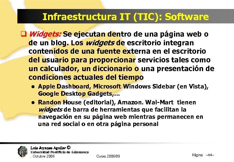 Infraestructura IT (TIC): Software q Widgets: Se ejecutan dentro de una página web o