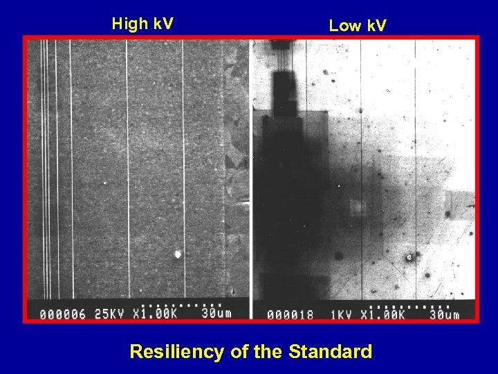 High k. V Low k. V Resiliency of the Standard