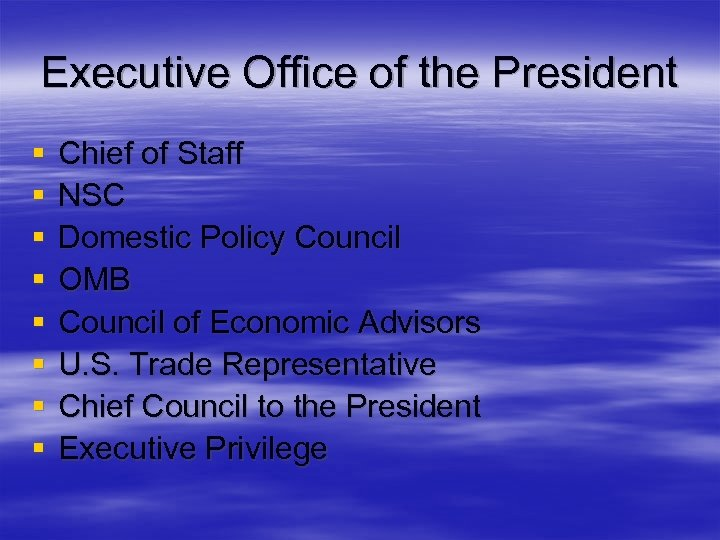 Executive Office of the President § § § § Chief of Staff NSC Domestic