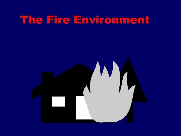The Fire Environment