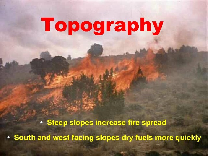 Topography • Steep slopes increase fire spread • South and west facing slopes dry