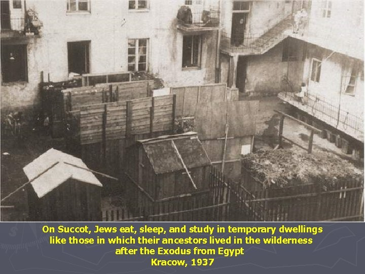 On Succot, Jews eat, sleep, and study in temporary dwellings like those in which