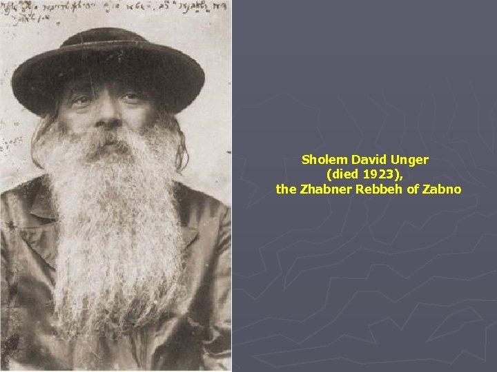 Sholem David Unger (died 1923), the Zhabner Rebbeh of Zabno