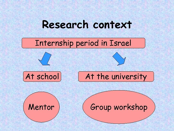 Research context Internship period in Israel At school Mentor At the university Group workshop