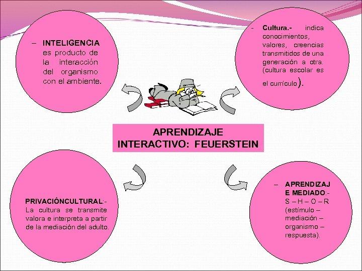 - – INTELIGENCIA es producto de la interacción del organismo con el ambiente. Cultura.