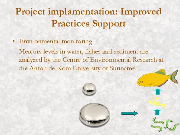 Project implamentation: Improved Practices Support • Environmental monitoring Mercury levels in water, fishes and