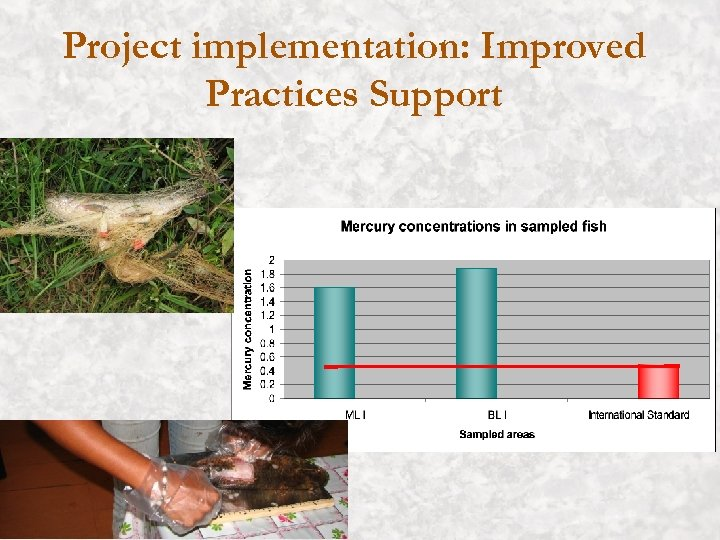 Project implementation: Improved Practices Support