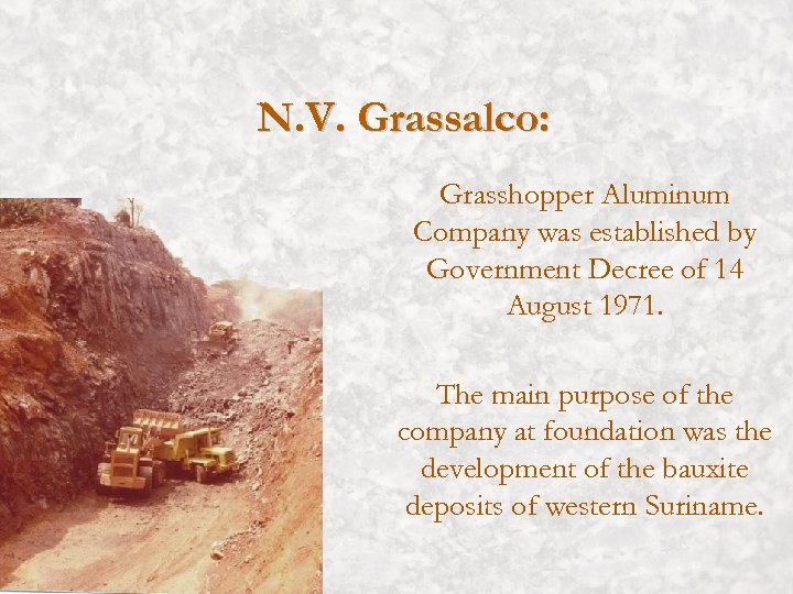 N. V. Grassalco: Grasshopper Aluminum Company was established by Government Decree of 14 August