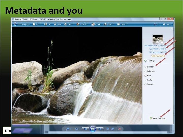 Metadata and you