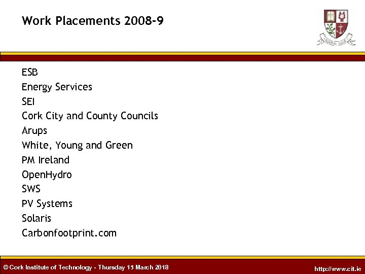 Work Placements 2008 -9 ESB Energy Services SEI Cork City and County Councils Arups