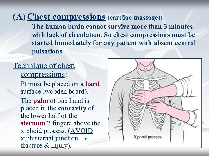 (A) Chest compressions (cardiac massage): The human brain cannot survive more than 3 minutes