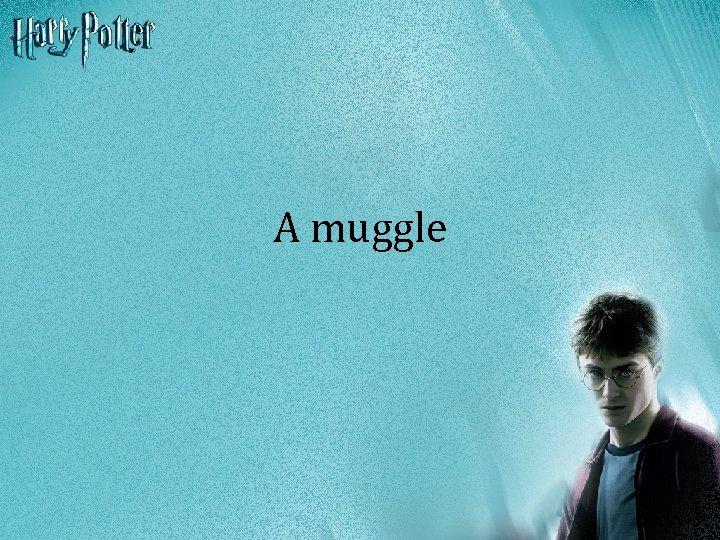A muggle