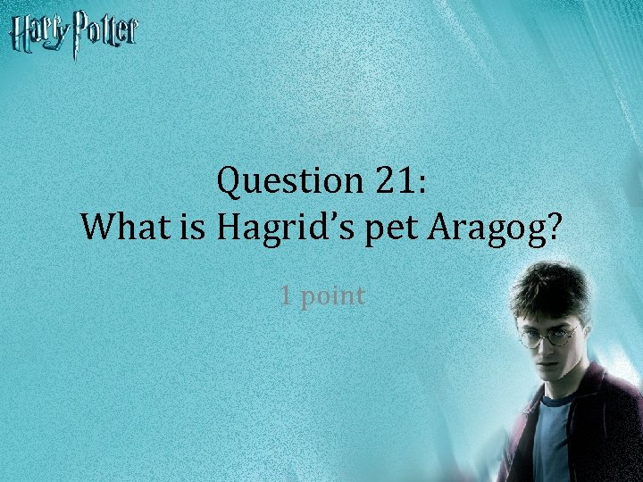 Question 21: What is Hagrid's pet Aragog? 1 point