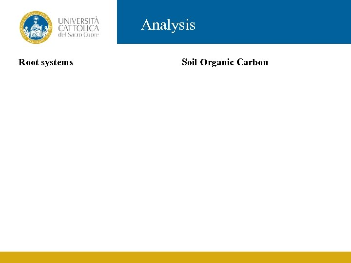 Analysis Root systems Soil Organic Carbon