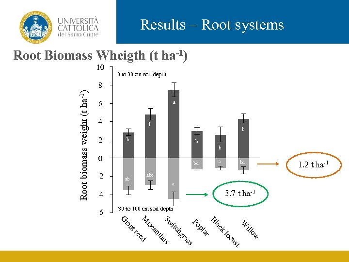 Results – Root systems Root Biomass Wheigth (t ha-1) 10 0 to 30 cm