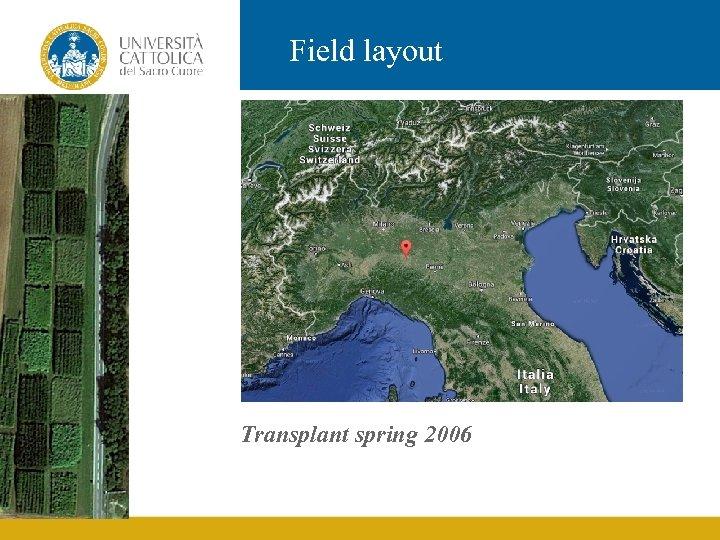 Field layout Transplant spring 2006