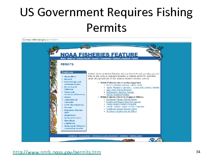 US Government Requires Fishing Permits http: //www. nmfs. noaa. gov/permits. htm 34