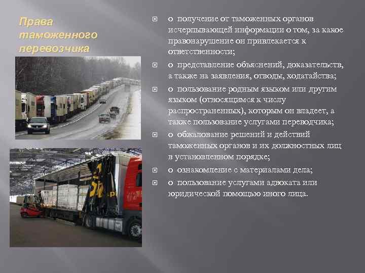 Права таможенного перевозчика o получение от таможенных органов исчерпывающей информации о том, за какое
