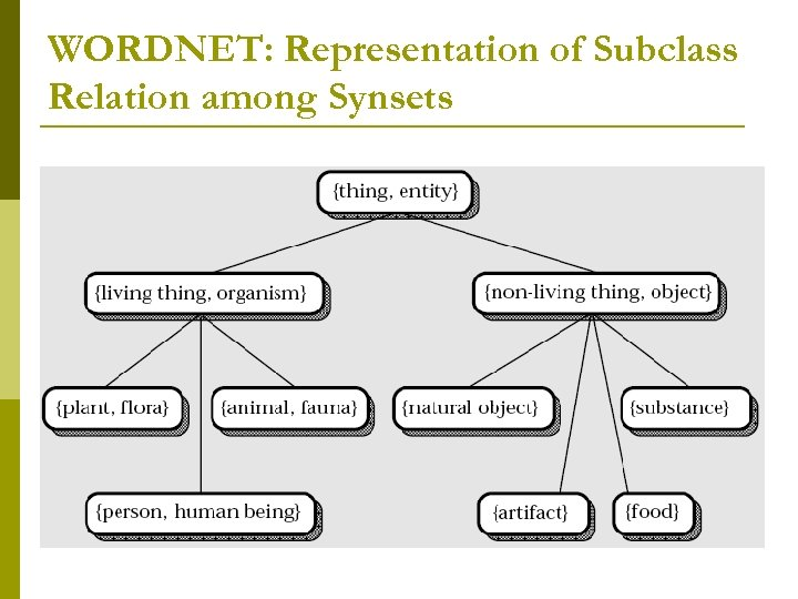 WORDNET: Representation of Subclass Relation among Synsets