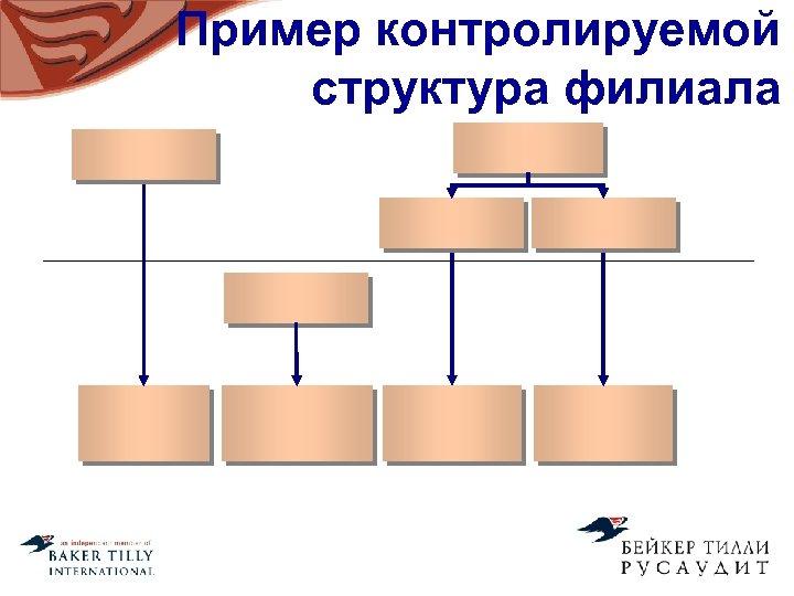 Пример контролируемой структура филиала