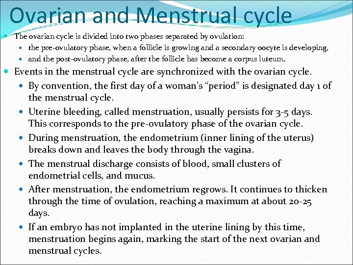 Ovarian and Menstrual cycle The ovarian cycle is divided into two phases separated by