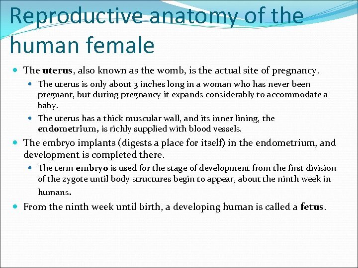 Reproductive anatomy of the human female The uterus, also known as the womb, is