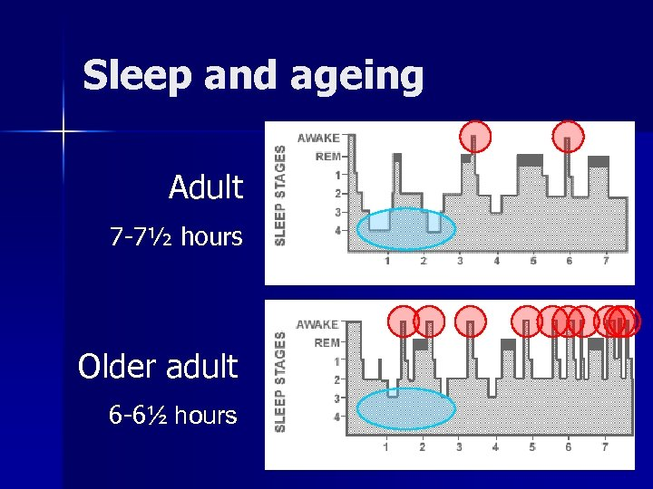 Sleep and ageing Adult 7 -7½ hours Older adult 6 -6½ hours