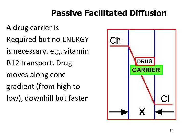 Passive Facilitated Diffusion A drug carrier is Required but no ENERGY is necessary. e.