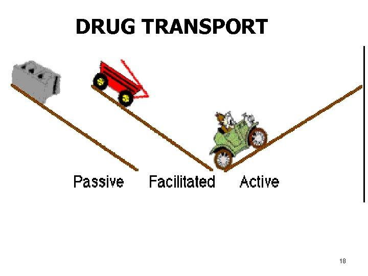 DRUG TRANSPORT 18