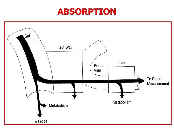 ABSORPTION 6