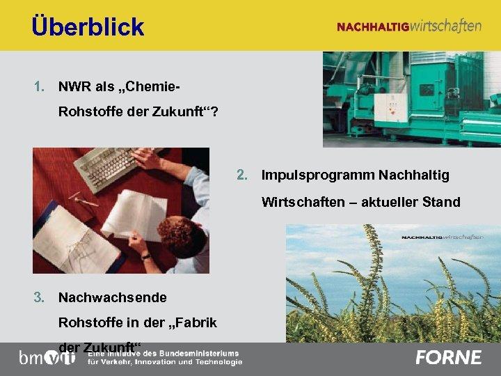 """Überblick 1. NWR als """"Chemie. Rohstoffe der Zukunft""""? 2. Impulsprogramm Nachhaltig Wirtschaften – aktueller"""
