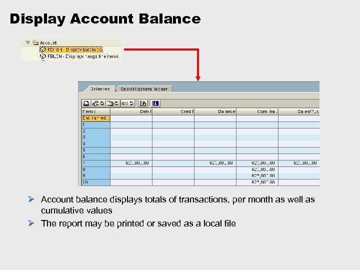 Display Account Balance Ø Account balance displays totals of transactions, per month as well