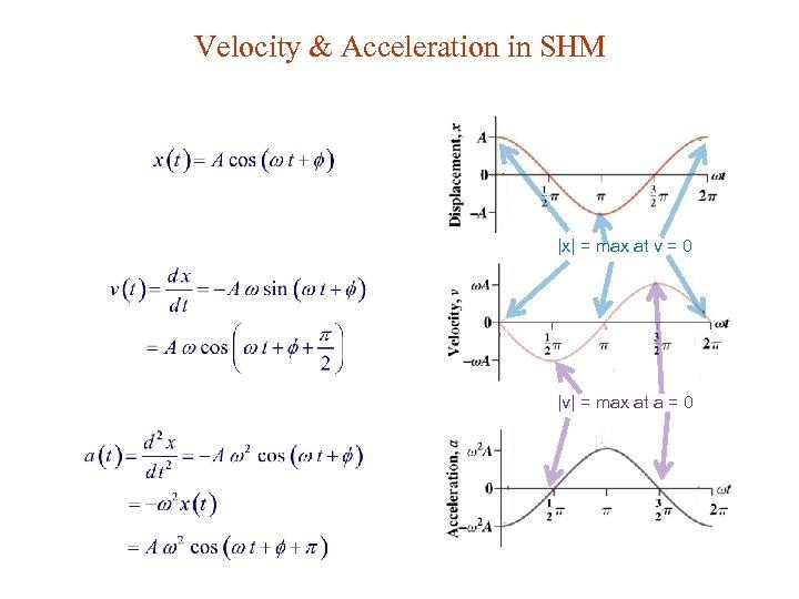 Velocity & Acceleration in SHM  x  = max at v = 0  v  =