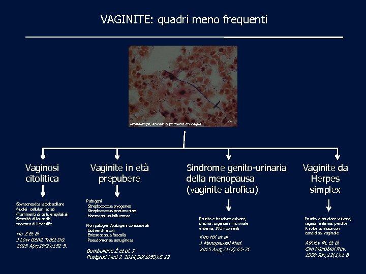 VAGINITE: quadri meno frequenti Microbiologia, Azienda Ospedaliera di Perugia Vaginosi citolitica • Sovracrescita lattobacillare