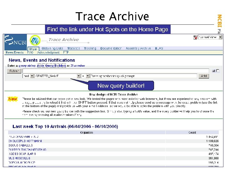 Find the link under Hot Spots on the Home Page New query builder! NCBI