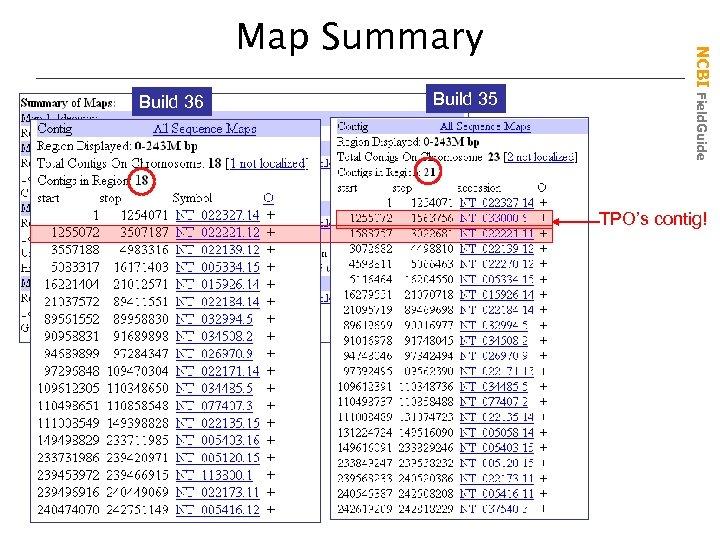 Build 36 Build 35 NCBI Field. Guide Map Summary TPO's contig!