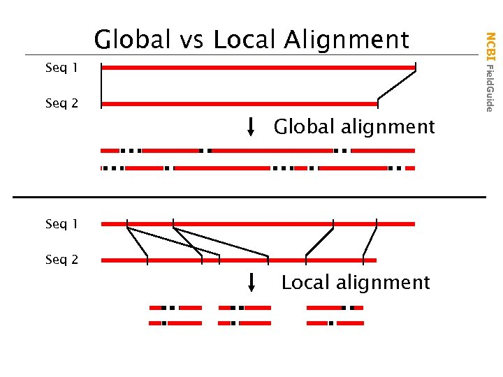 Seq 2 Global alignment Seq 1 Seq 2 Local alignment NCBI Field. Guide Seq