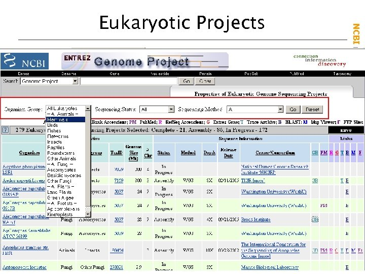 NCBI Field. Guide Eukaryotic Projects