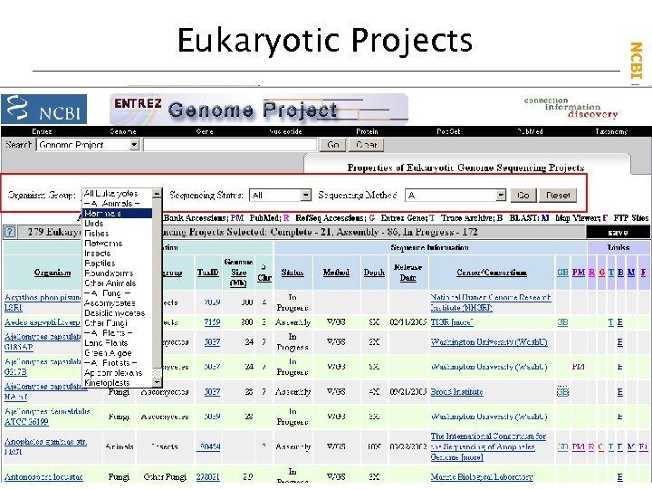 NCBI Field. Guide Eukaryotic Projects