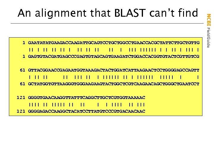 1 GAATATATGAAGACCAAGATTGCAGTCCTGCTGGCCTGAACCACGCTATTCTTGCTGTTG || || || |||||| | | ||| | 1 GAGTGTACGATGAGCCCGAGTGTAGCAGTGAAGATCTGGACCACGGTGTACTCGTTGTCG 61 GTTACGGAACCGAGAATGGTAAAGACTACTGGATCATTAAGAACTCCTGGGGAGCCAGTT