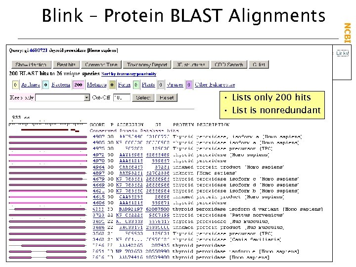 • Lists only 200 hits • List is nonredundant NCBI Field. Guide Blink