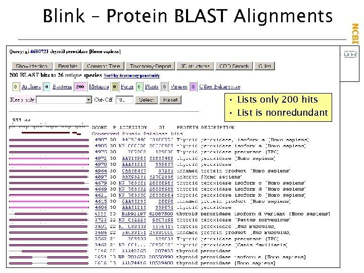 • Lists only 200 hits • List is nonredundant NCBI Field. Guide Blink