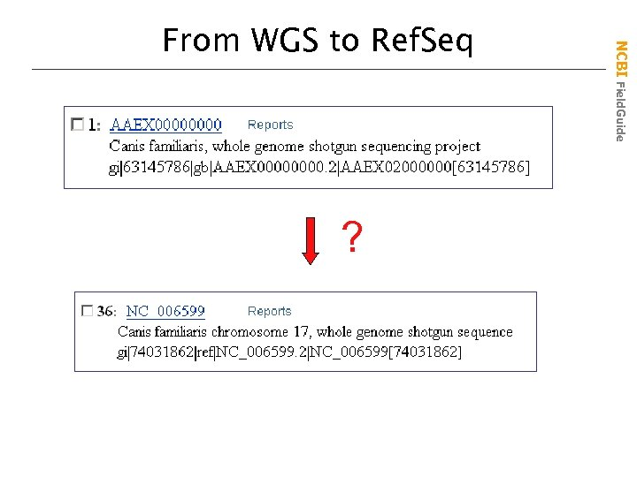 ? NCBI Field. Guide From WGS to Ref. Seq