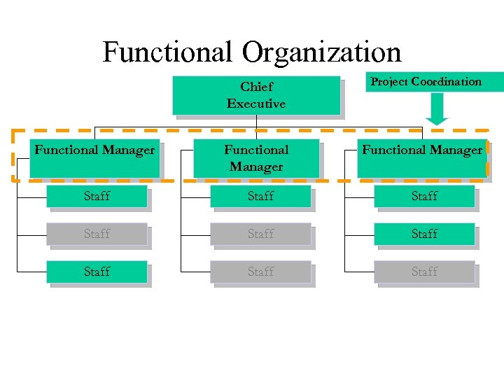 Functional Organization Chief Executive Functional Manager Project Coordination Functional Manager Staff Staff Staff