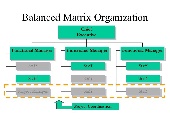 Balanced Matrix Organization Chief Executive Functional Manager Staff Staff Project Manager Staff Project Coordination