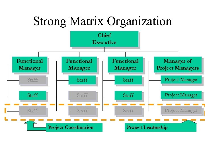 Strong Matrix Organization Chief Executive Functional Manager of Project Managers Staff Staff Project Manager