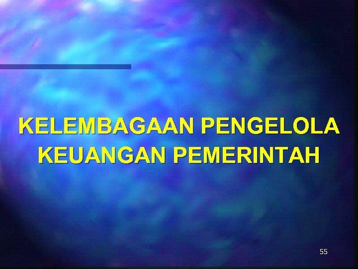 KELEMBAGAAN PENGELOLA KEUANGAN PEMERINTAH 55