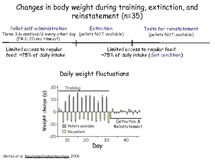 Changes in body weight during training, extinction, and reinstatement (n=35) Pellet self-administration Extinction Three