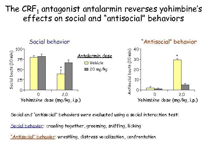 """The CRF 1 antagonist antalarmin reverses yohimbine's effects on social and """"antisocial"""" behaviors """"Antisocial"""""""
